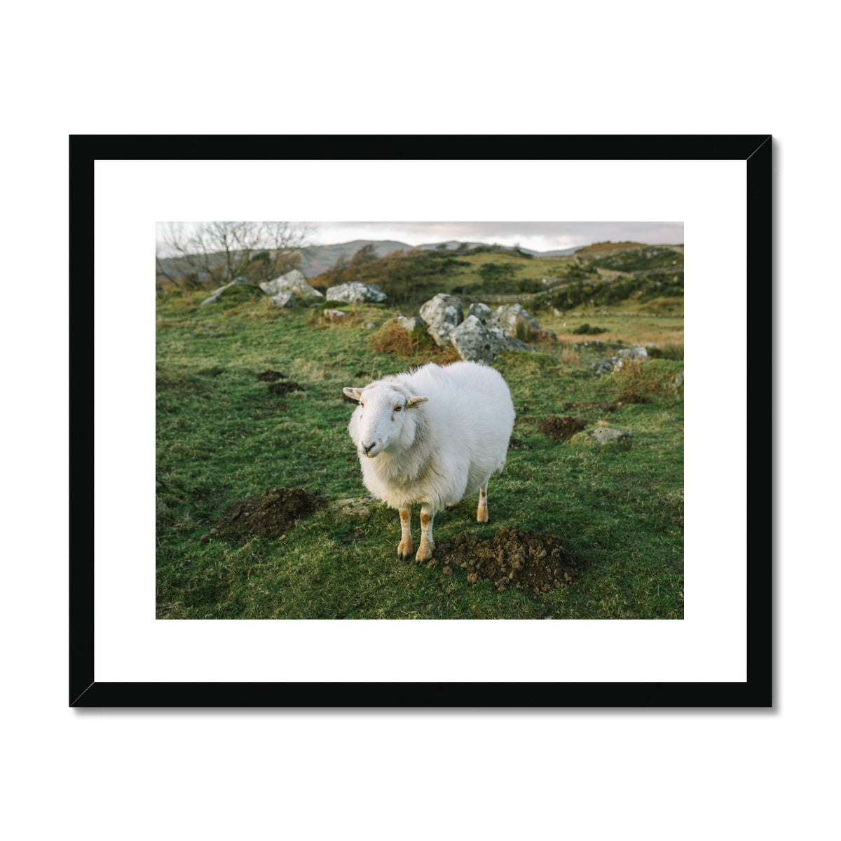 'Landscape (no.02)' Wales, 2019 Framed & Mounted Print