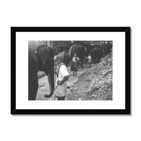 'India (no.273)' Cochin, 2011 Framed & Mounted Print