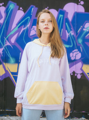 Whitney Pastel Color Hoodie In Lavender