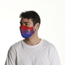 Load image into Gallery viewer, Newcastle Knights Face Mask - The Mask Life.