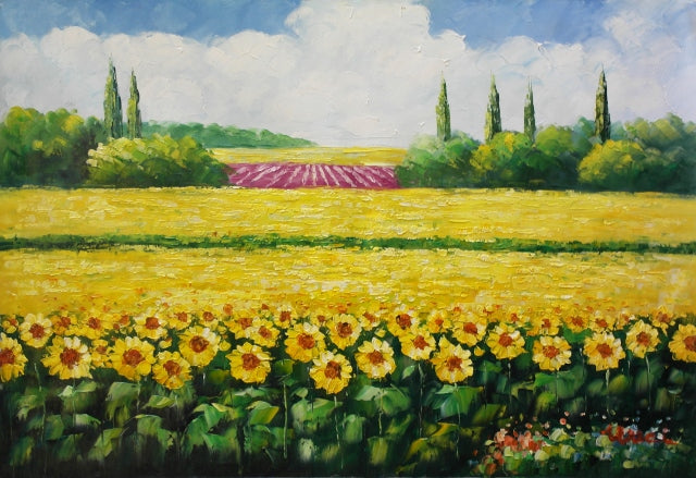 A Sunflower Field