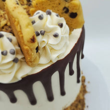 Load image into Gallery viewer, Chocolate Chip Cake