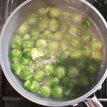 Load image into Gallery viewer, Brussel Sprout Dust