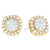 9ct Two Tone Gold Round Brilliant Cut with 1/4 CARAT tw of Diamonds