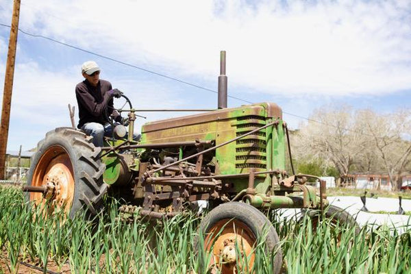 tom tractor