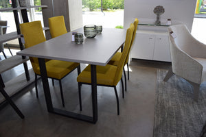 Table BURTON 36x60