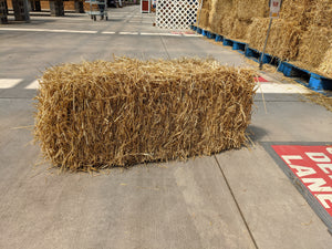 Straw Bale 36x18x14  -  Fall H & G Decora