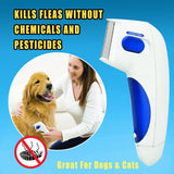 Electric Flea Comb Dog