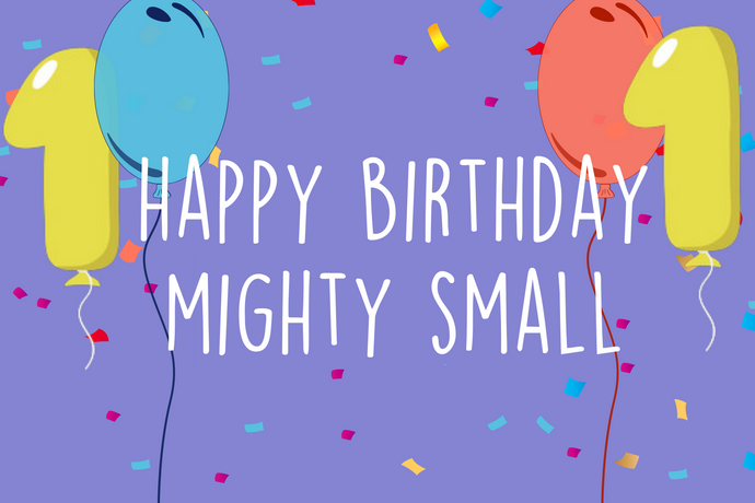 Mighty Small's 1st Birthday!