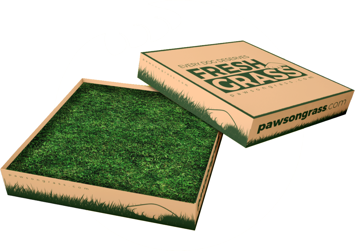 Paws on Grass - Product - Small Pog