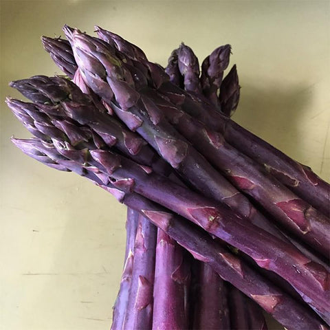 Sweet Purple Asparagus