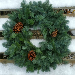 Wreath, Live - Noble Fir