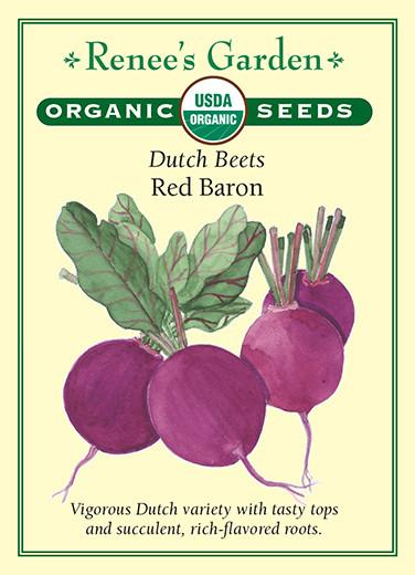 Beet Dutch Red Baron Organic