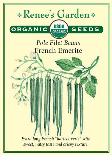 Bean Pole Emerite Filet Organic