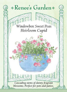 Sweet Pea Windowbox Cupid Scented