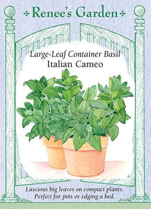 Basil Container Italian Cameo