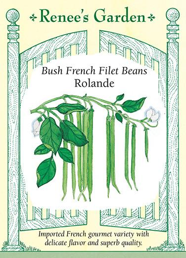 Bean Bush Rolande French