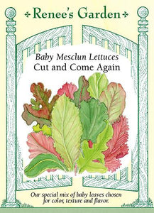 Lettuce Baby Mesclun Cut & Come Again