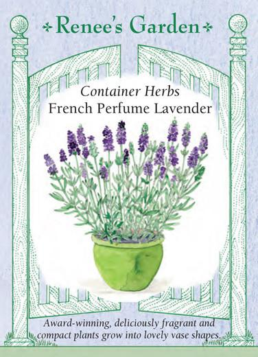 Lavender Container French Perfume