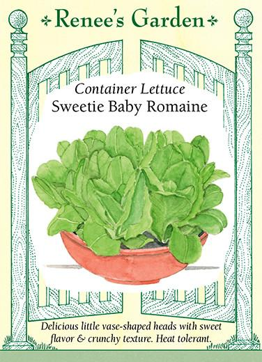 Lettuce Container Sweetie Baby Romaine