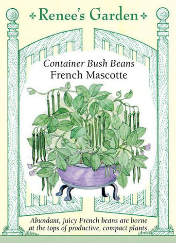 Bean Bush Container French Mascotte