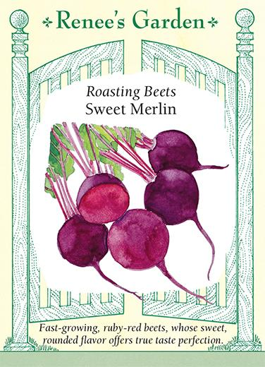 Beet Roasting Sweet Merlin