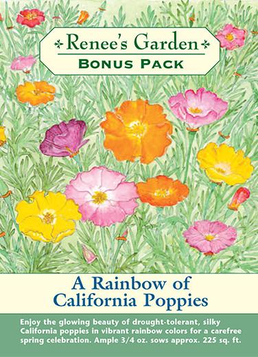 A Rainbow of California Poppies (Heirloom 1 large pkt)