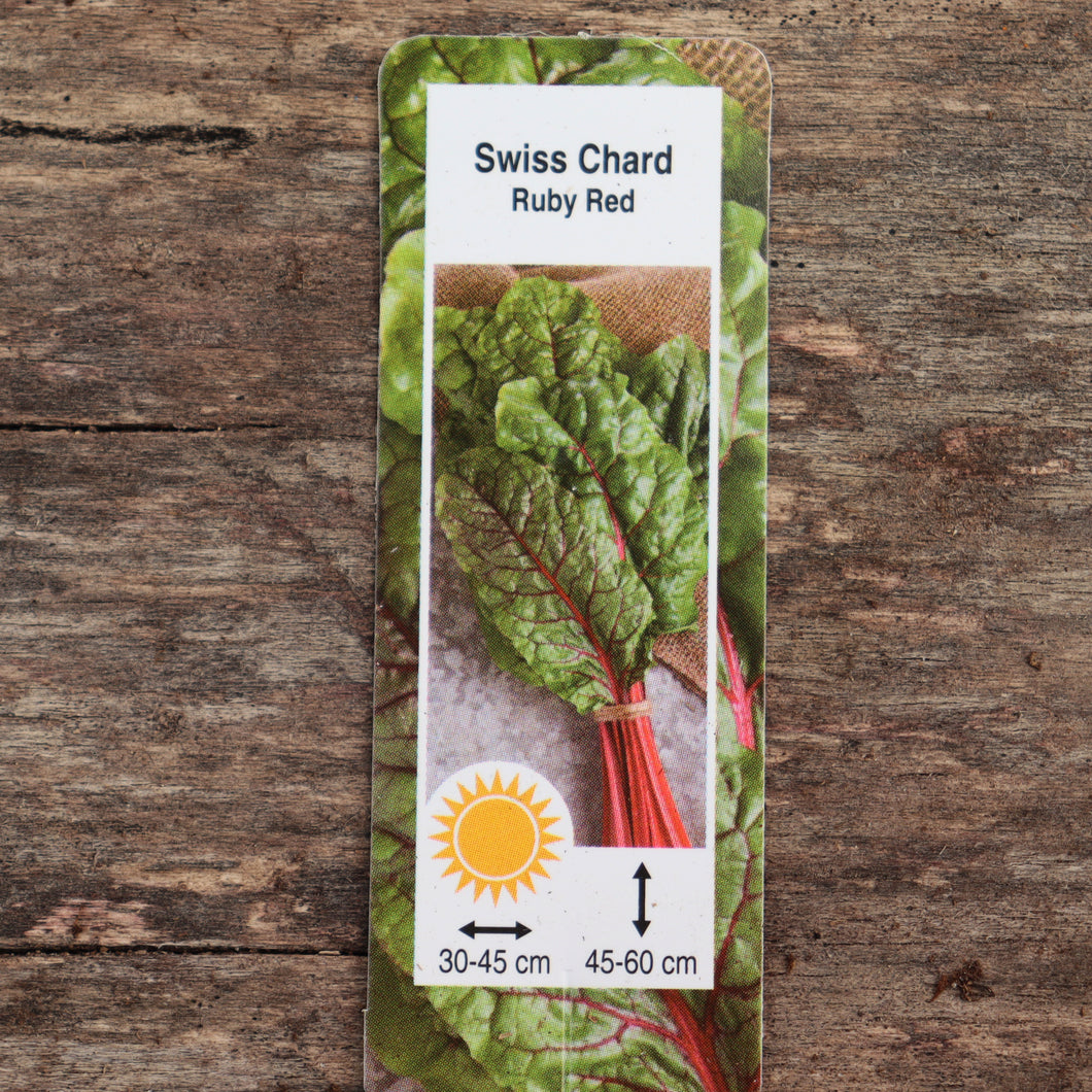 Chard - Ruby Red - Certified Organic