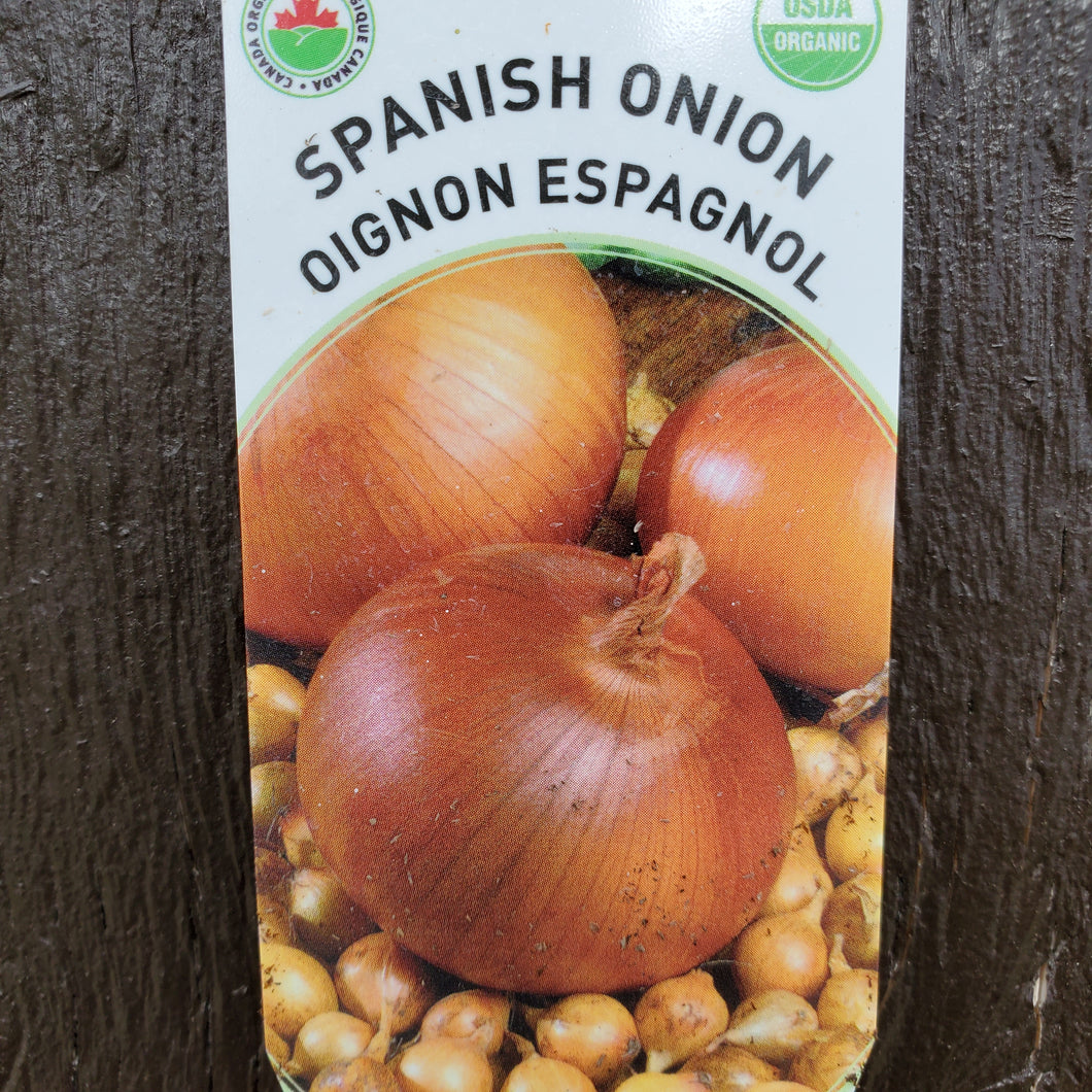 Onion, Spanish - Certified Organic