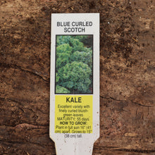 Load image into Gallery viewer, Kale - Vates/Scotch Curled Blue - Certified Organic