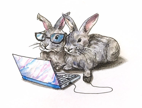 Two Rabbits sitting by laptop