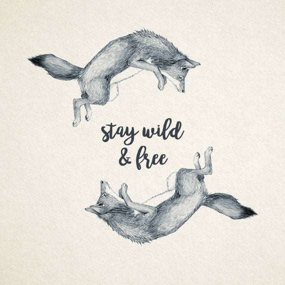 Stay Wild and Free