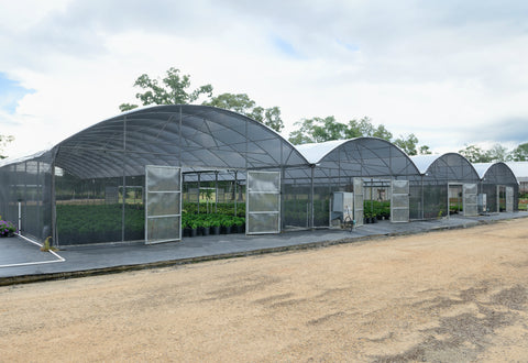 Gutter Connected Greenhouses Jcm Greenhouse Mfg