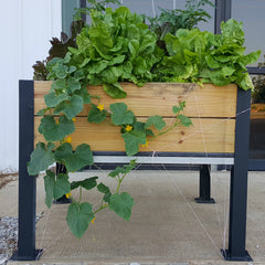elevated raised bed garden kit