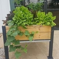 Grow Table - JCM Greenhouse Mfg.