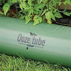 Ooze Tube Tomato Watering System - JCM Greenhouse Mfg.