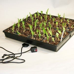 Kwik Grow Heat Mats 1 Tray - JCM Greenhouse Mfg.