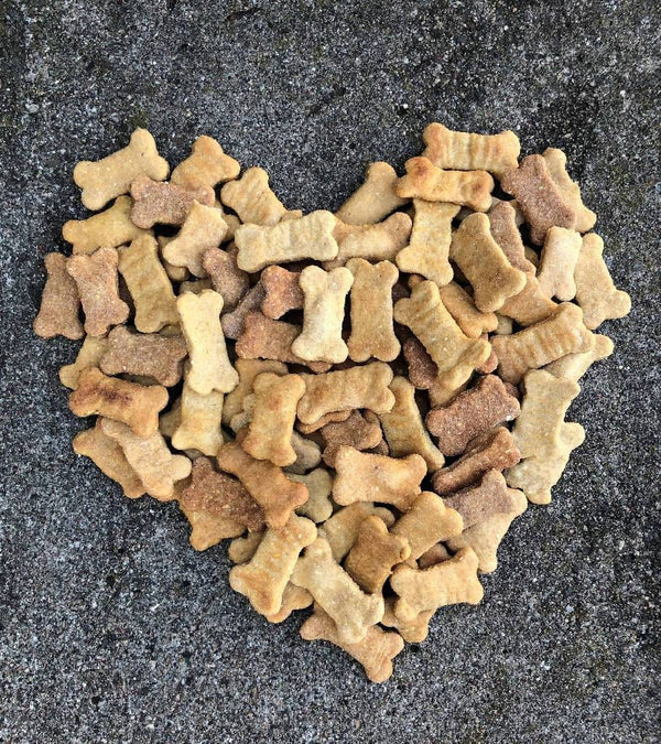 Luca's Organic Peanut Butter Pumpkin Dog Treats Refillable Canister includes 2 1/2 Pounds of Treats - TEEN OWNED AND OPERATED!