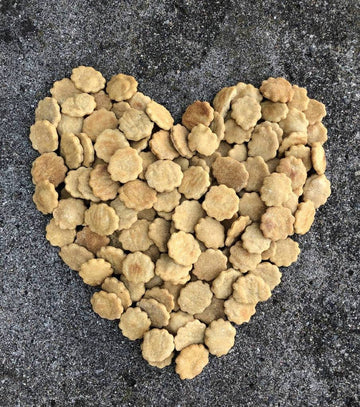 Luca's Organic Beef Biscuits Dog Treats - 3 Pound Bulk - TEEN OWNED AND OPERATED!
