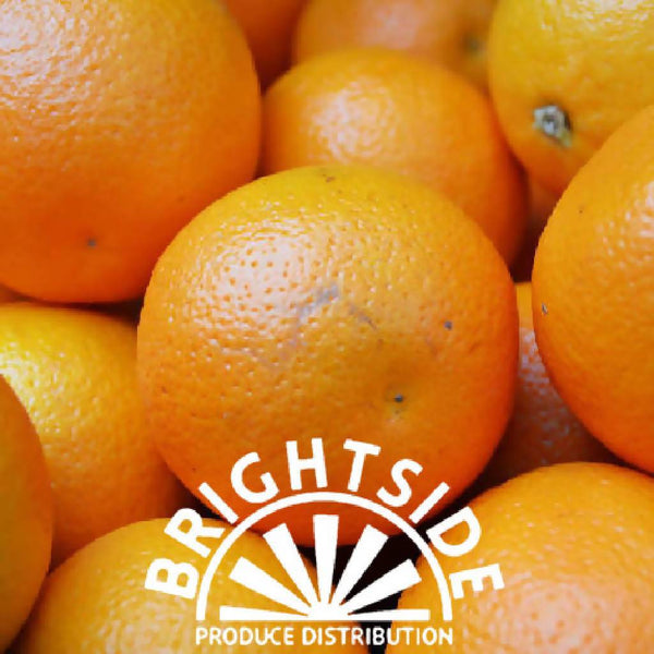 Orange (Valencia) (per unit) - Organic