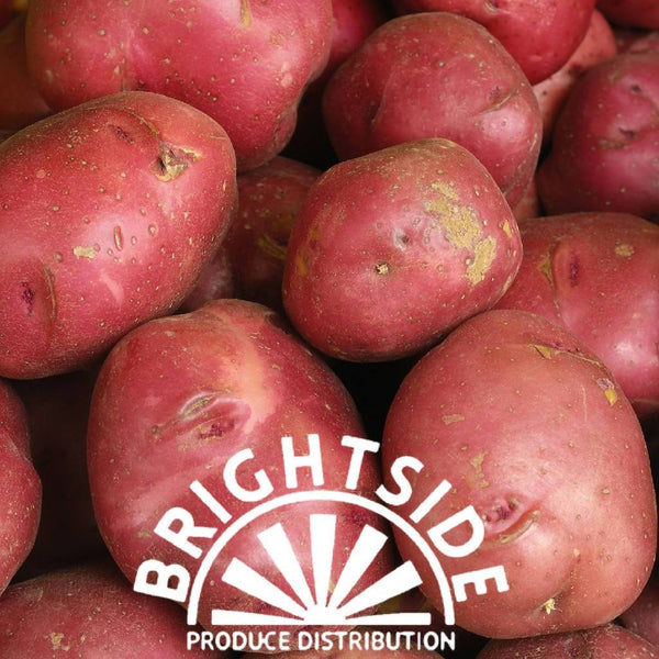 Potato (Red) (per lb.) - Organic