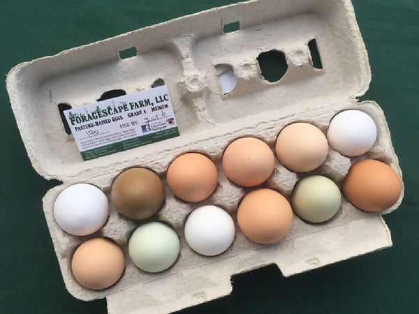 Fresh Non-GMO Eggs (1 dozen)