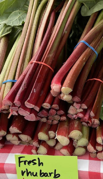 Fresh Rhubarb, Bundle