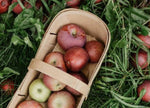 Sweetland Orchard Apples: by the Quarter, Half or Full Peck