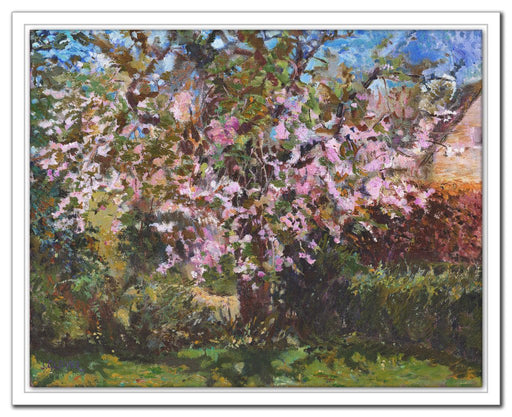 Cherry Tree Canvas Print. Canvas Print made from original painting of a Cherry Blossom. Canvas Print from original art. Available at Judi Glover Art. Original Painting by Judi Glover. Used for Wall Art.