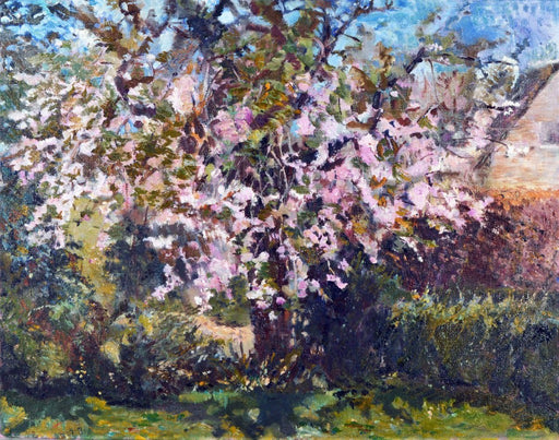 Cheery Blossom oil painting fine art by Judi Glover Art. Judi Glover is UK Artist making beautiful and unique cards