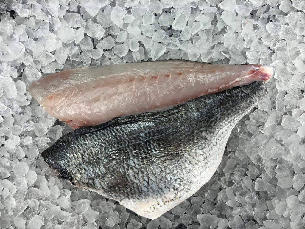 Gilthead Sea Bream Fillets  (packs of 2)