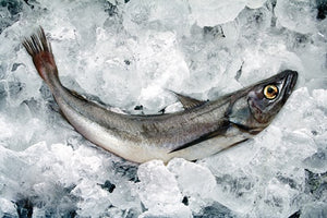 Hake, a whole fresh 2-3kg fish filleted