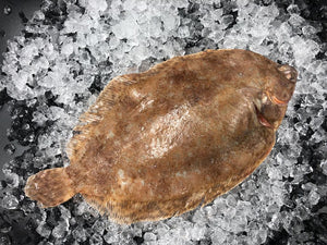 Lemon Sole 3/450 gm, fresh whole , pack of 2 (skin/trim)