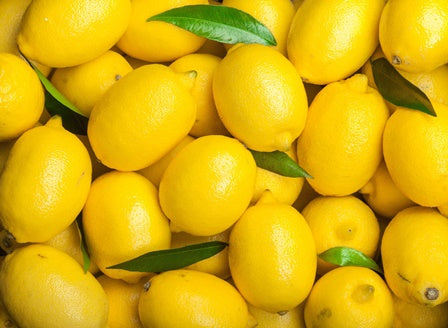 Lemons  (pack of 6)